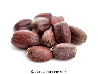 seeds., chinensis), jojoba, (simmondsia