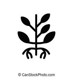 seeds  glyph flat icon