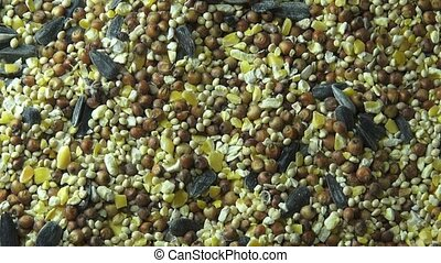 Seeds, Grains, Pet Foods, Grains