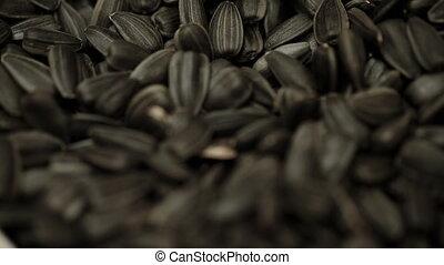 Seeds of sunflower closeup - Seeds of sunflower fried black...
