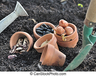 seeds to sowing - seeds in pot with gardening tools placed...