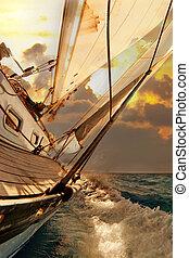 segelbåt, skörd, under, den, regatta