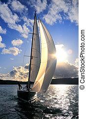 segelboot, himmelsgewölbe, gegen