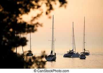 segelboote, in, adriatisches meer, an, sonnenuntergang