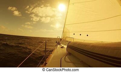 segeln jacht, in, der, meer, an, sonnenuntergang
