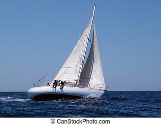 segla, in, regatta, med, stark, linda