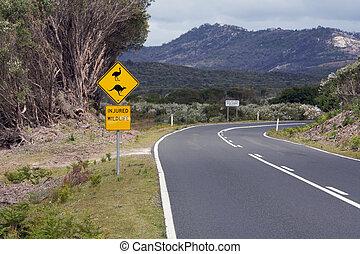 segno, fauna, australia, strada