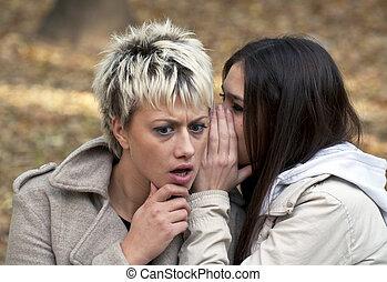 segreti, parco, giovane, attraente, sussurrio, donne