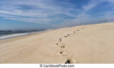 seguindo, pegadas, ligado, praia, costa