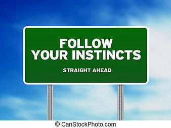 seguir, sinal, seu, instintos, estrada, -, verde