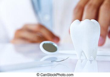 segurando, odontólogo, molar