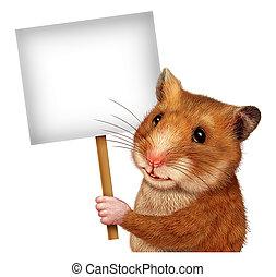 segurando, sinal, hamster, animal estimação, em branco
