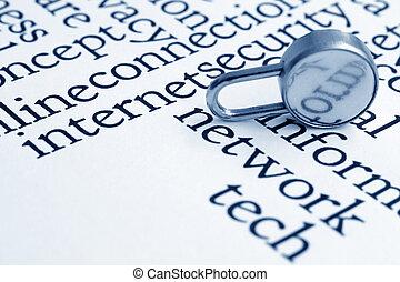 seguridad de internet