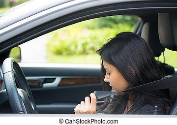 seguridad, y, seatbelts
