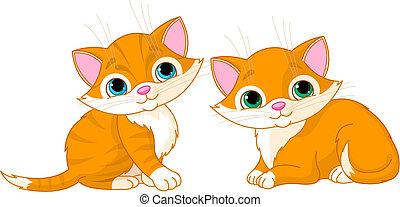 sehr, reizend, katzen, zwei