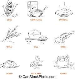 seigle, groats, céréales, griffonnage, maïs, millet, orge, vecteur, riz, muesli, blé, avoine, ensemble, sarrasin, porridge, cornflakes