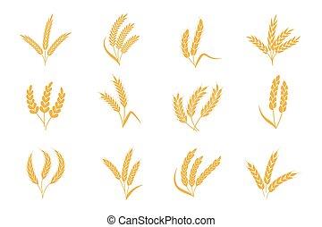 seigle, organique, conditionnement, bière, icon., tige, silhouette, grain, pain, ou, nourriture, pointe, vecteur, éléments, label., récolte, blé, ears., isolé, ensemble, logo