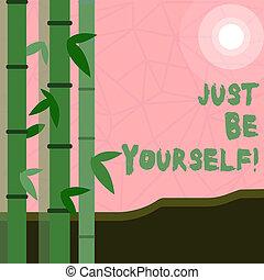sein, vertrauen, geschaeftswelt, gerecht, foto, ausstellung, yourself., schreibende, merkzettel, sicher, haltung, selbst, showcasing, wahr, motivation., ehrlichkeit