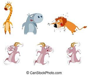 seis animais, jogo