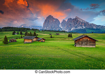 Seiser Alm with Langkofel group in background at sunset,...
