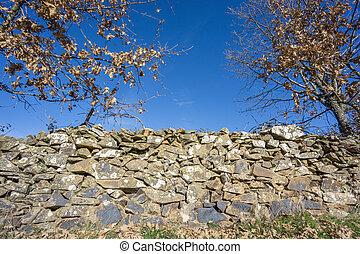 seitenansicht, von, steinmauer, zaun, und, eiche, bäume, in, winter