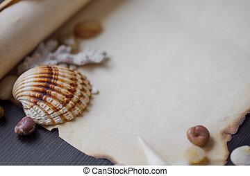 seixos, antigas, mar, texto, scroll, tema, lugar, seashells, náutico, pergaminho