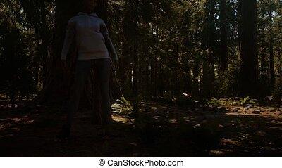 sekwoja, kobieta, krajowy, yosimite, park
