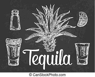 sel, tequila, botlle, verre, cactus, chaux