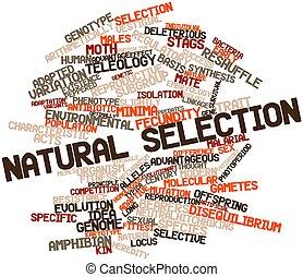 selección, natural