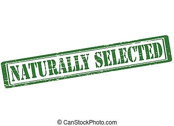 selecionado, naturally