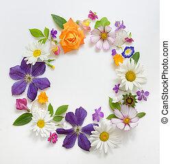 selectie, van, gevarieerd, bloemen, vrijstaand