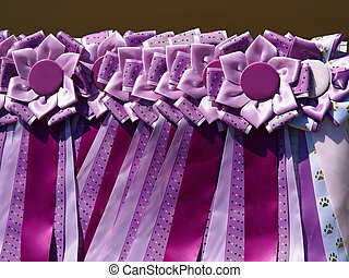 Selection of colorful ribbon prizes