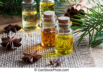 Selection of essential oils with star anise, clove, cinnamon...