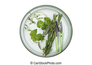 Selection of herbs on a plate
