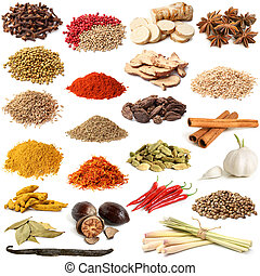 Selection of various spice on white background
