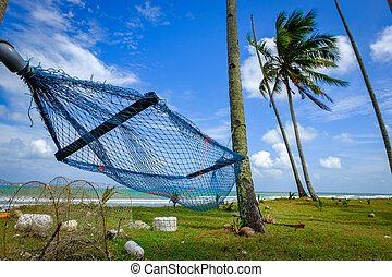 selective focus image of hammock under coconut tree near the beach with blue sky background at sunny day