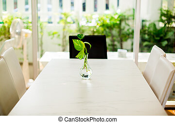 selective focus of golden pothos tree in the glass vase