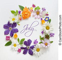 selezione, di, vario, fiori, isolato