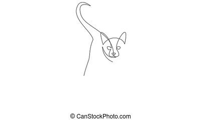 Self drawing simple animation of single continuous one line drawing kitten pet cat animal. Drawing by hand video