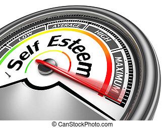 self esteem conceptual meter indicate maximum, isolated on...