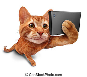 Selfie Cat - Selfie cat on a white background as a cute...