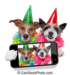 selfie, cumpleaños, perros