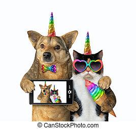 selfie, fait, chien, licorne, chat
