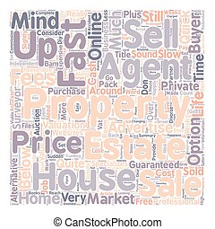 Sell My House Fast text background wordcloud concept