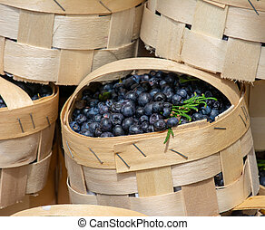 Selling blueberries at the market