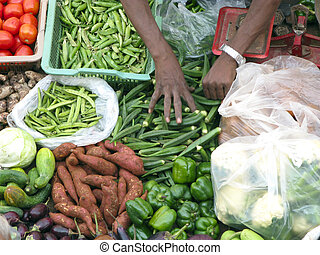 Selling Fresh Vegetable