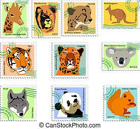 sellos, de, animales