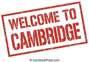 selo, cambridge, bem-vindo