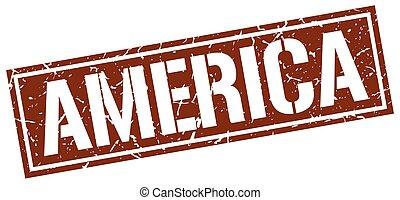 selo, marrom, américa, quadrado