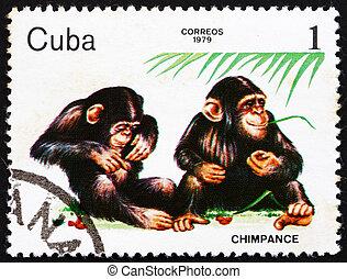 selo postal, cuba, 1979, chimpanzé, jardim zoológico, animais